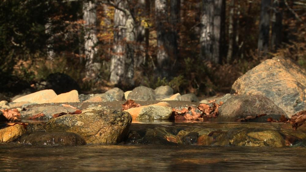 area_river_stones.jpg