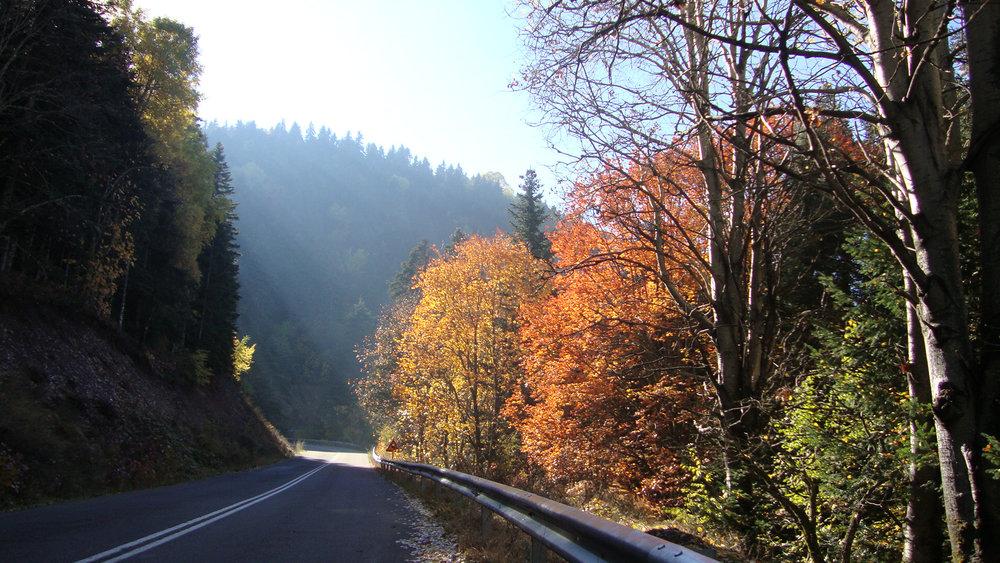 Perivoli_roadNov2010.jpg