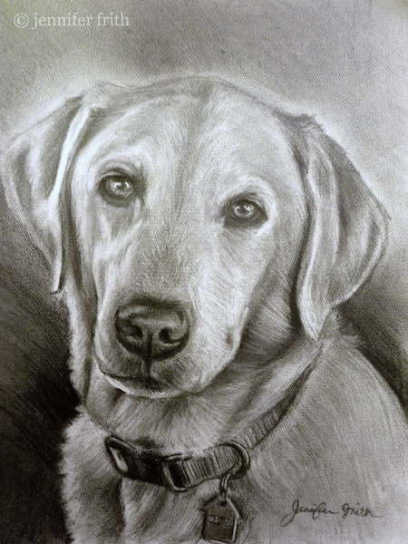 jennys-sketchbook-dog-pet-portrait-pencil-lab.jpg