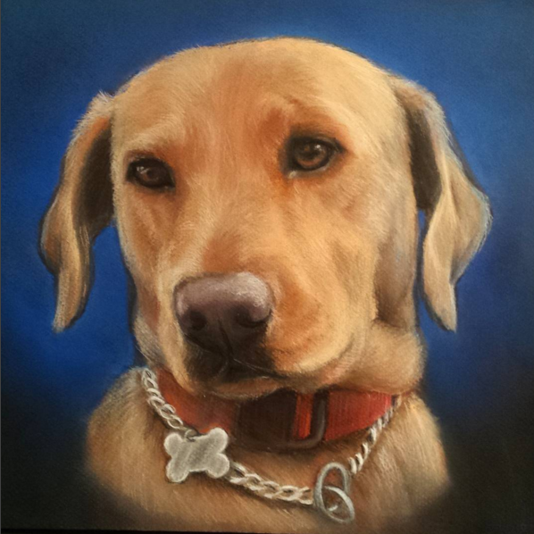 Customized Pet and Animal Portraits - Treat yourself or a loved one to a portrait keepsake.  Available in various sizes.  Charcoal, Pencil, Watercolor, or Pastels.