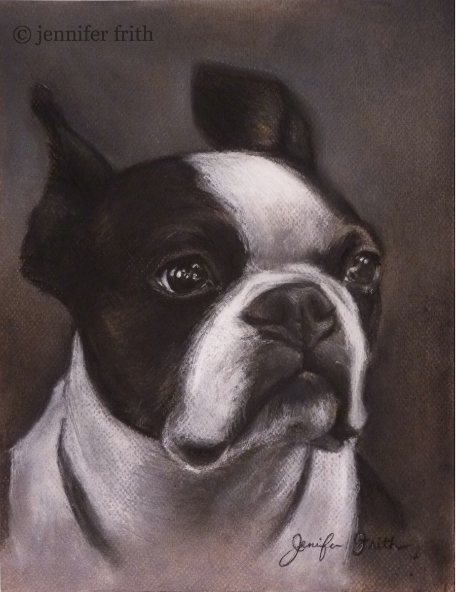 jenny-frith-charcoal-pet-portrait-2.jpg
