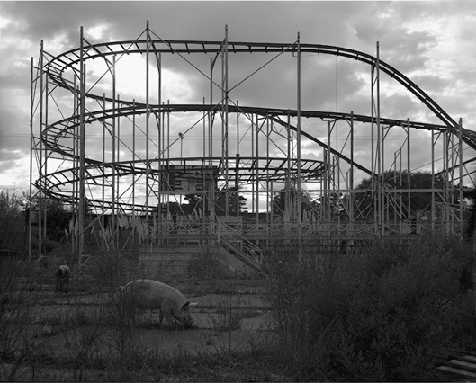 Rollercoaster   archival pigmented print