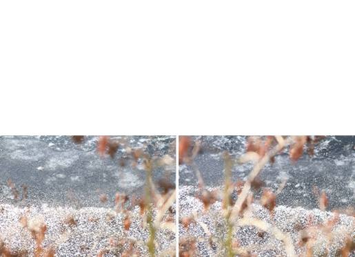 Untitled (Snow 1 & Snow 2)   2010-11  20 x 30 Inches  Archival Pigment Print