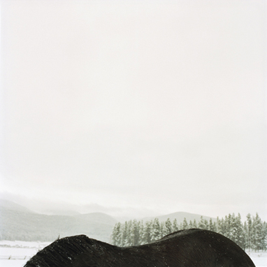 Horseback Mountain, 1999   36 x 36 inches  Archival pigment print