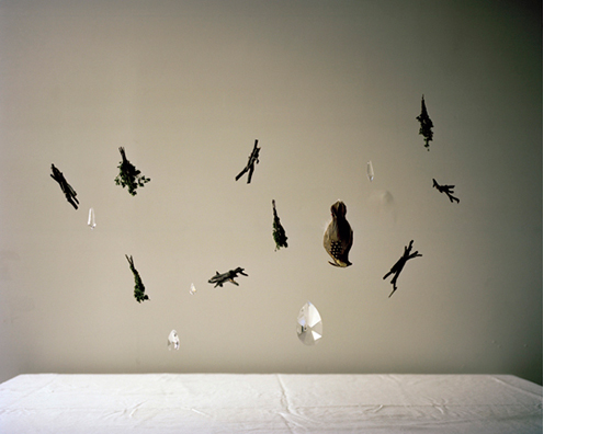 Gravitation, 2012   30 x 38 inches  Archival pigment print