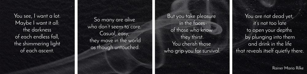Rilke-Banner-Spaces.jpg