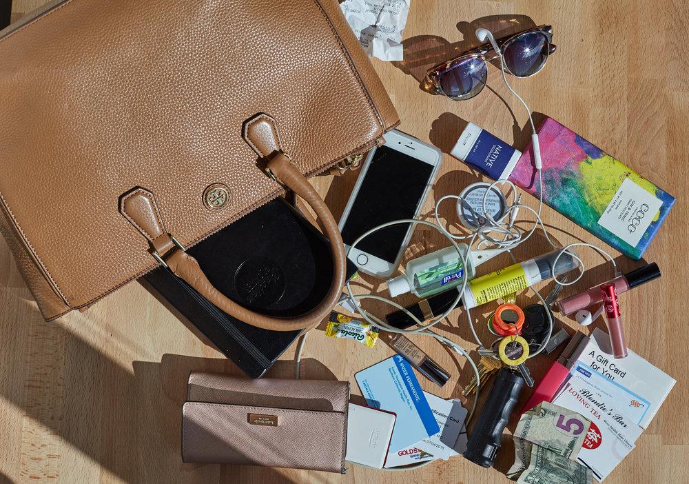ac-purse-IMG_1171.jpg