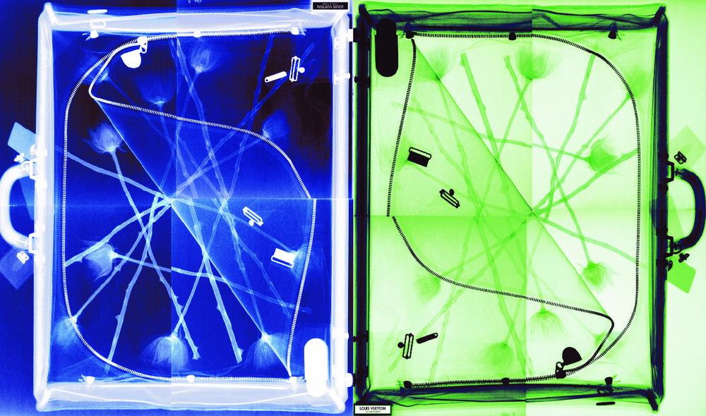 RADIOGRAPHIELOUIS VUITTON BLUE - LOUIS VUITTON GREEN - PIGMENT PRINTS © STEVE MILLER COURTESY EDITIONS LAUMONT