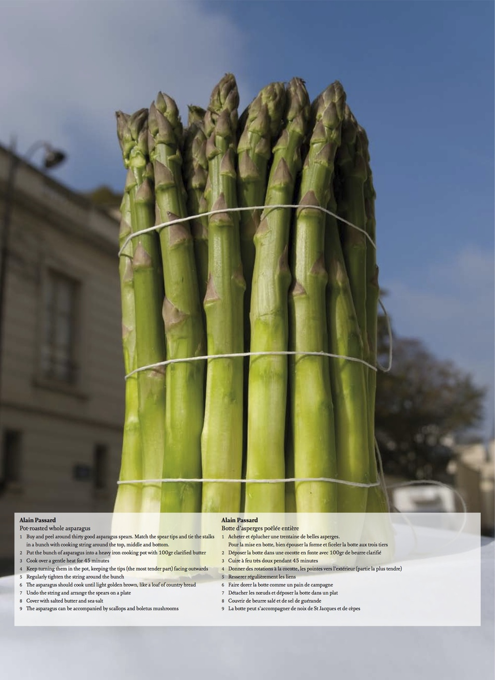 Botte_d_asperges_Alain_Passard_for_ICONOfly.jpg