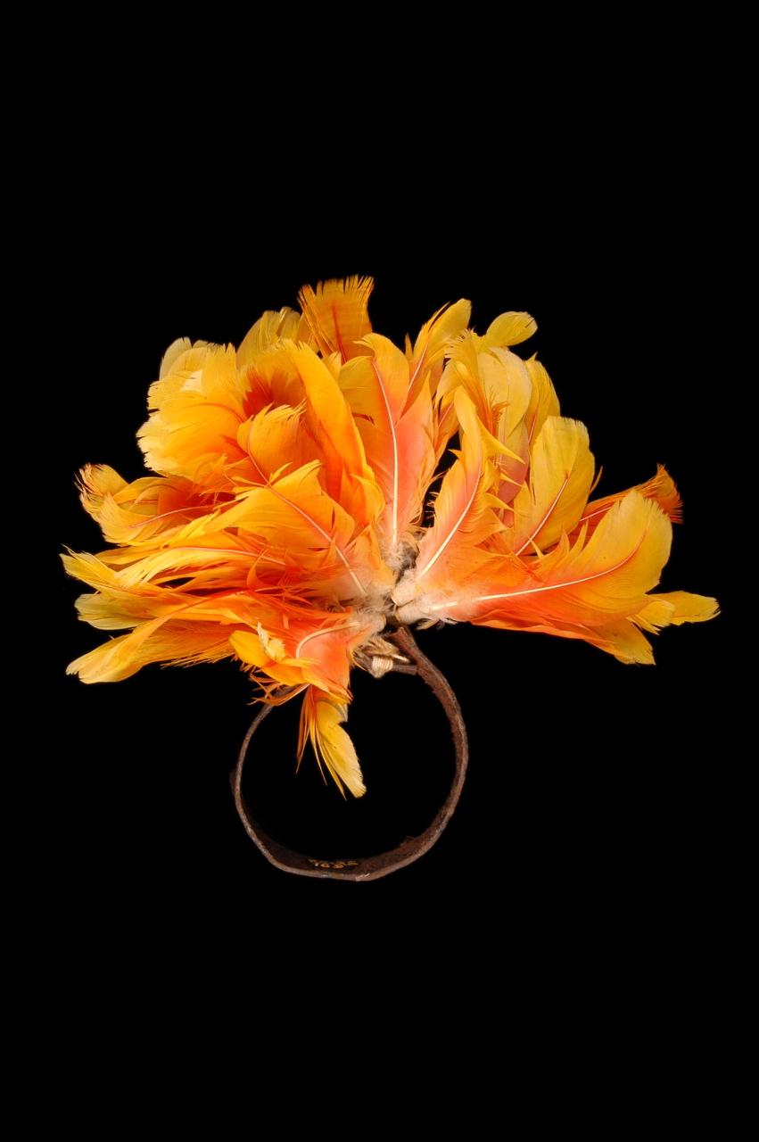 18. BRÉSIL. Bracelet cérémoniel pour les jeunes gens. Cuir, plumes, bambou. Rio das Arraias, Kayapo. Début XXe siècle