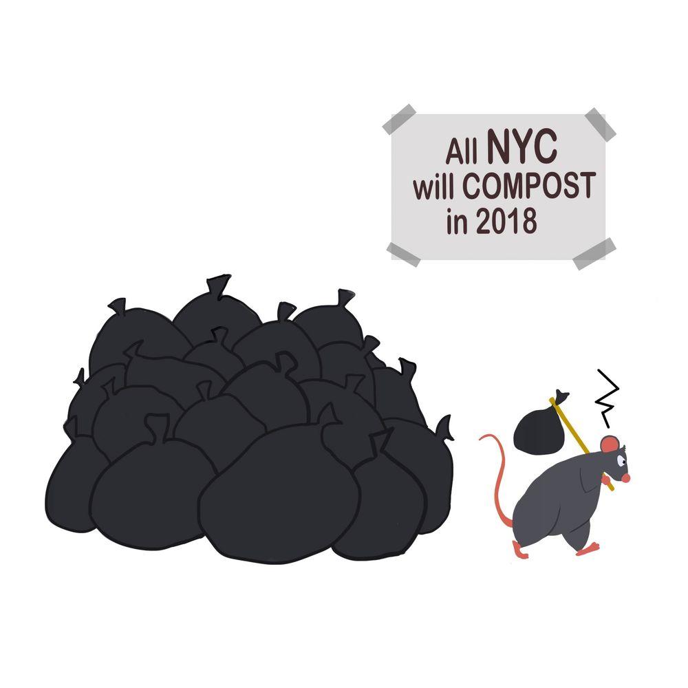 rat compost.jpg
