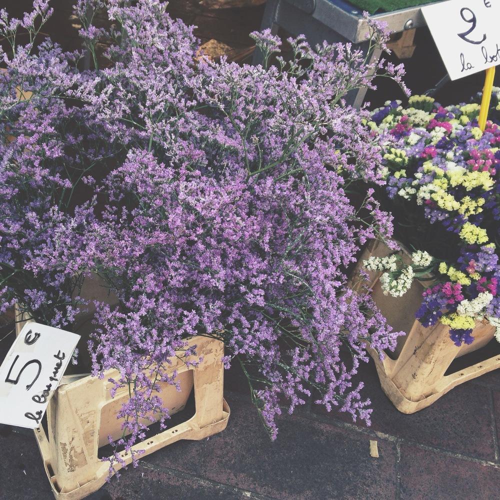 lavender_nice.jpg