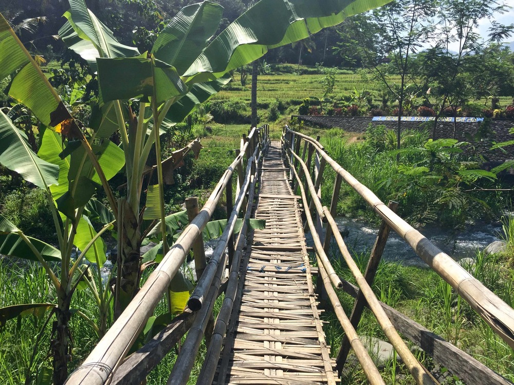A bridge into the rice fields that made even my guide nervous. My strategy was slow and steady. His strategy was run like hell and laugh nervously at me as I sorted it out. (c) 2015 Gail Jessen, A Series of Adventures