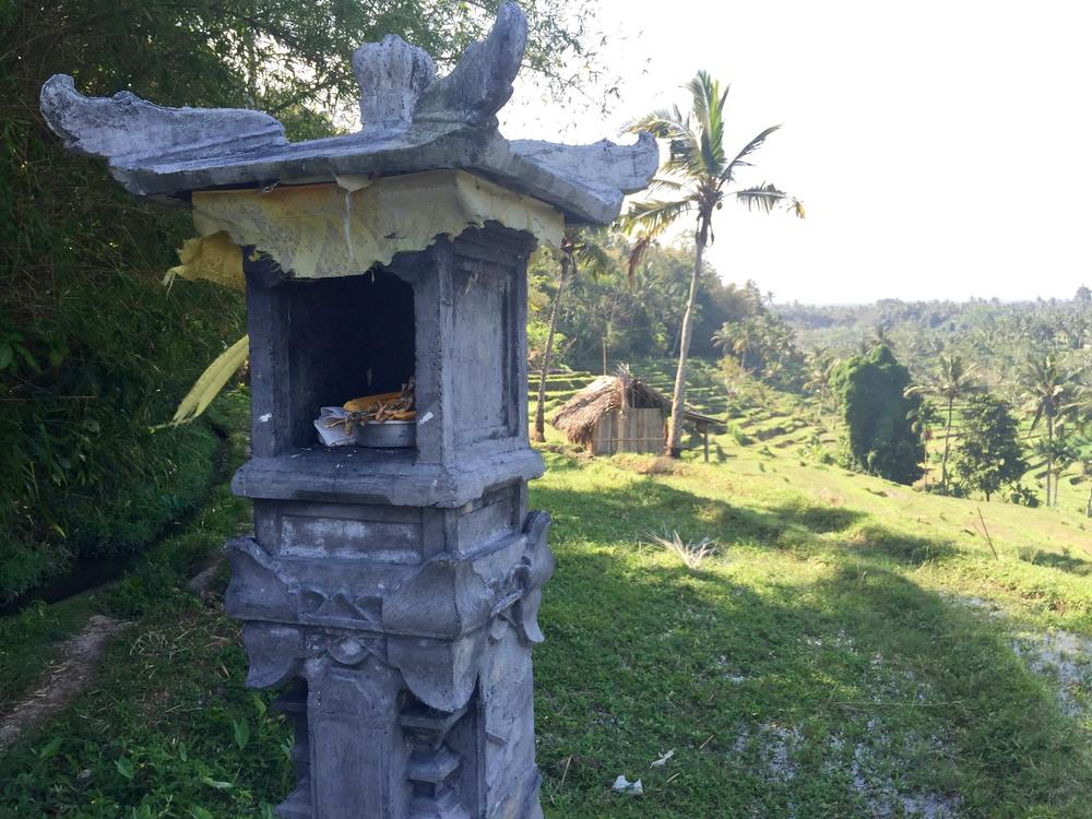 Altars were scattered throughout the terraces (of course) and intense was burning in every one. I don't know if this is true, but I liked imagining a tiny and tiny Balinese grandmother hiking up and down all day tending to the incense. (c) 2015 Gail Jessen, A Series of Adventures