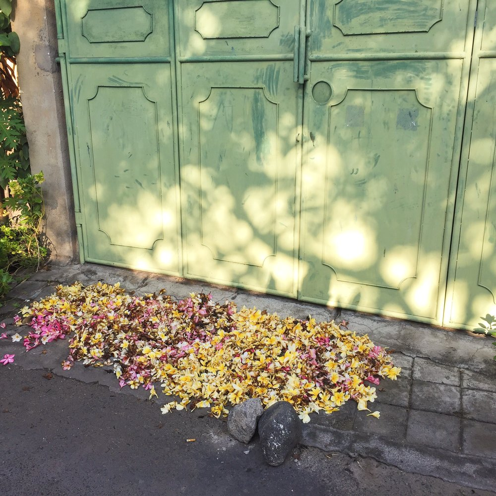 Discarded altar flowers adorn the streets of Bali. © 2016 Gail Jessen, A Series of Adventures