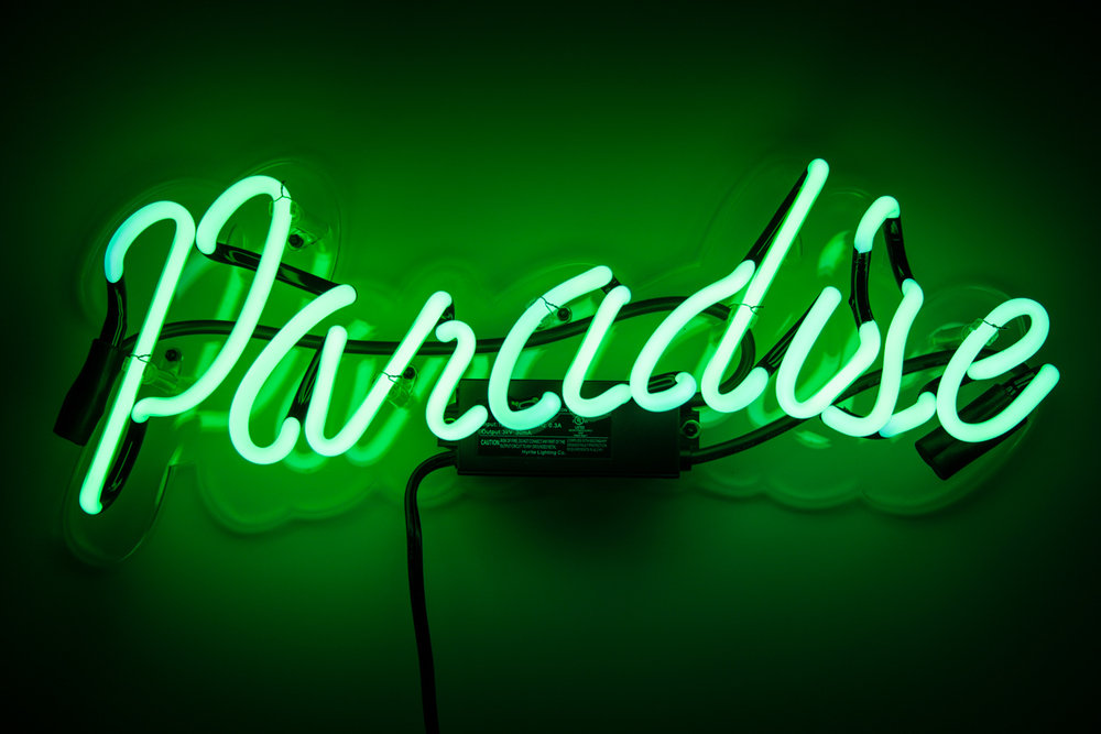 Paradise on.jpg