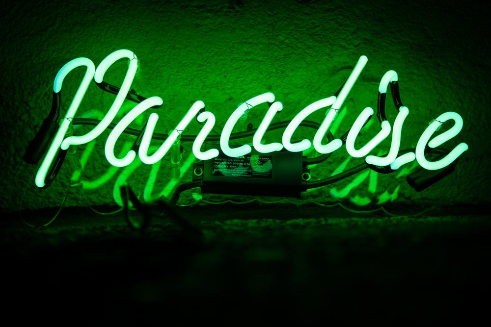 Paradise Floor.jpg