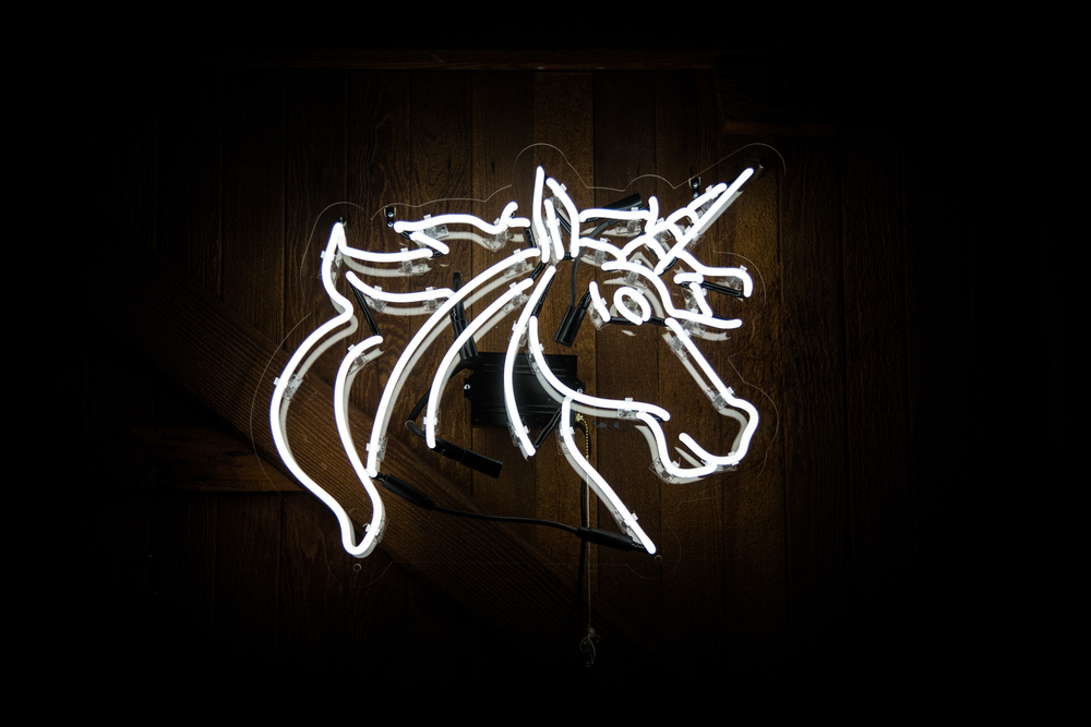 Neon MFG - unicorn 2.jpg