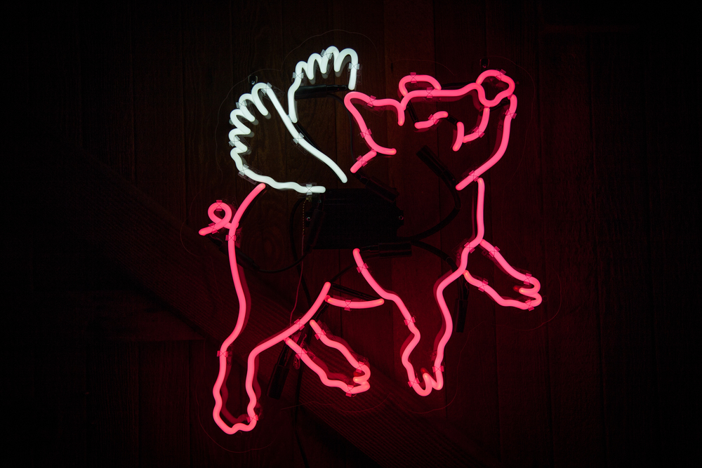 Neon MFG - flying pig 2.jpg