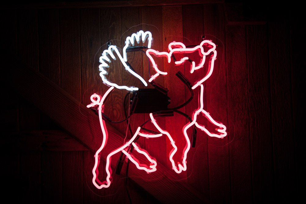 Neon MFG - flying pig 1.jpg