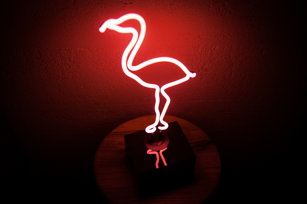 Flamingo side.jpg