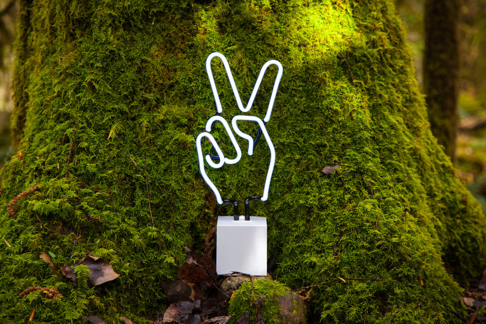 Peace Hand Forest 17.jpg