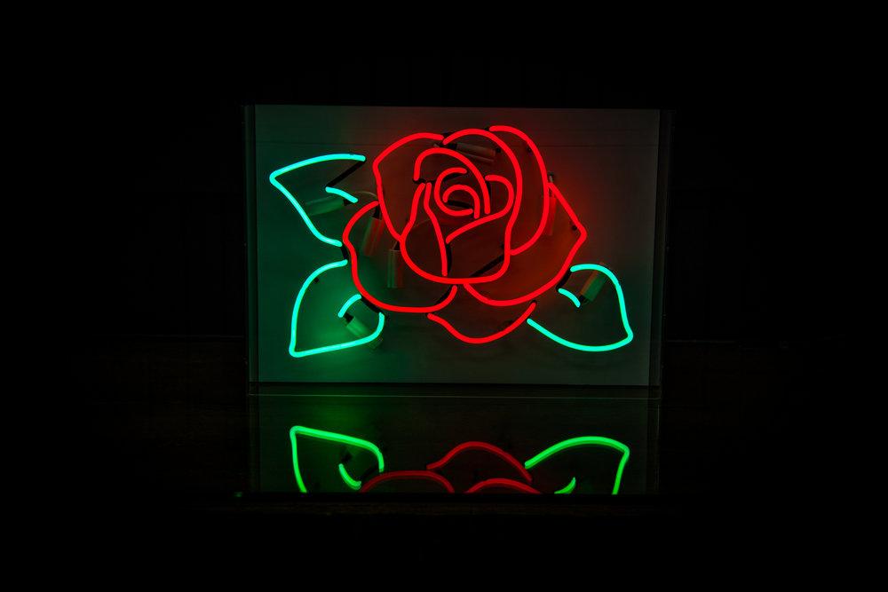 Gallery - Rose 01.jpg