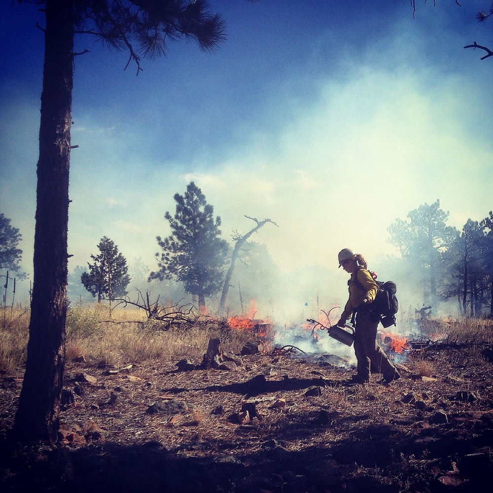 A firefighter with the Boulder County Sheriff's Office Wildland Firefighter Management Program uses a drip torch to lay down fire as part of a prescribed burn at Heil Valley Ranch.