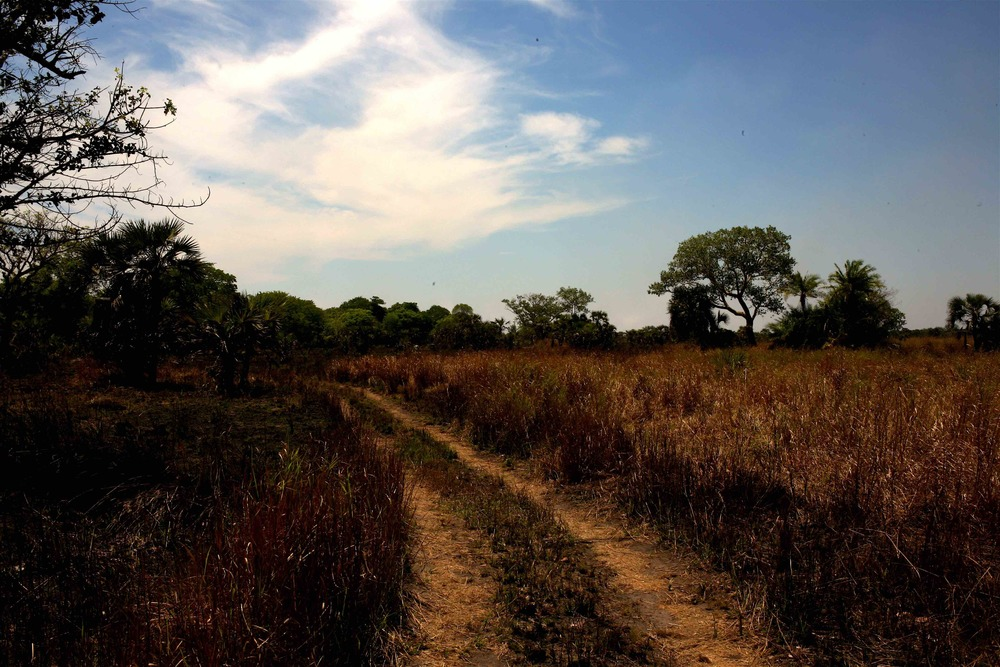 A hot and dusty trail