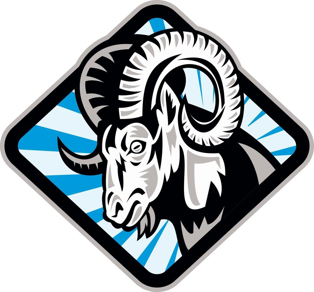 bighorn-ram-sheep-goat_M1_GmPId.jpg