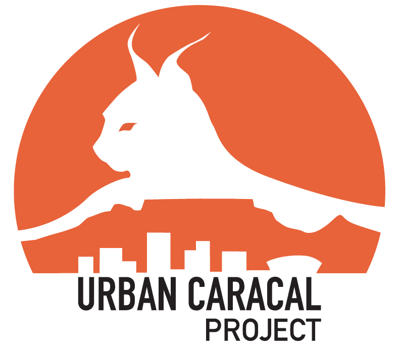 Urban Caracal Project