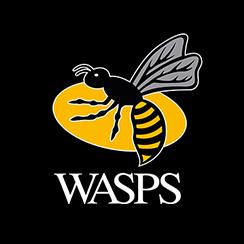 wasps_logo_244x244.jpg