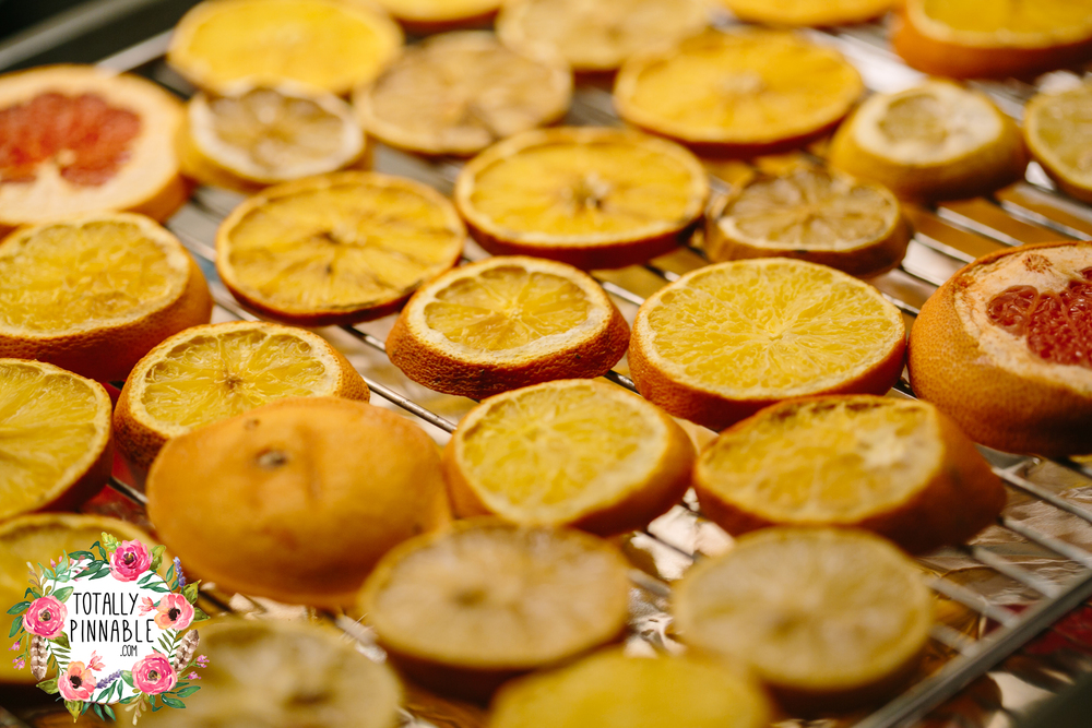 www.totallypinnable.com Dried Fruit Slices DIY