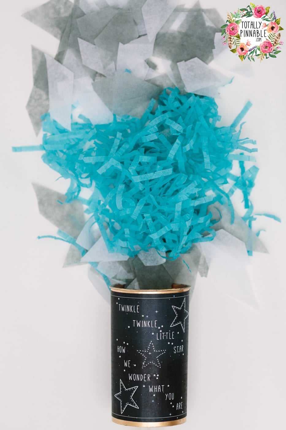 totallypinnable.com gender reveal confetti pop available to buy now