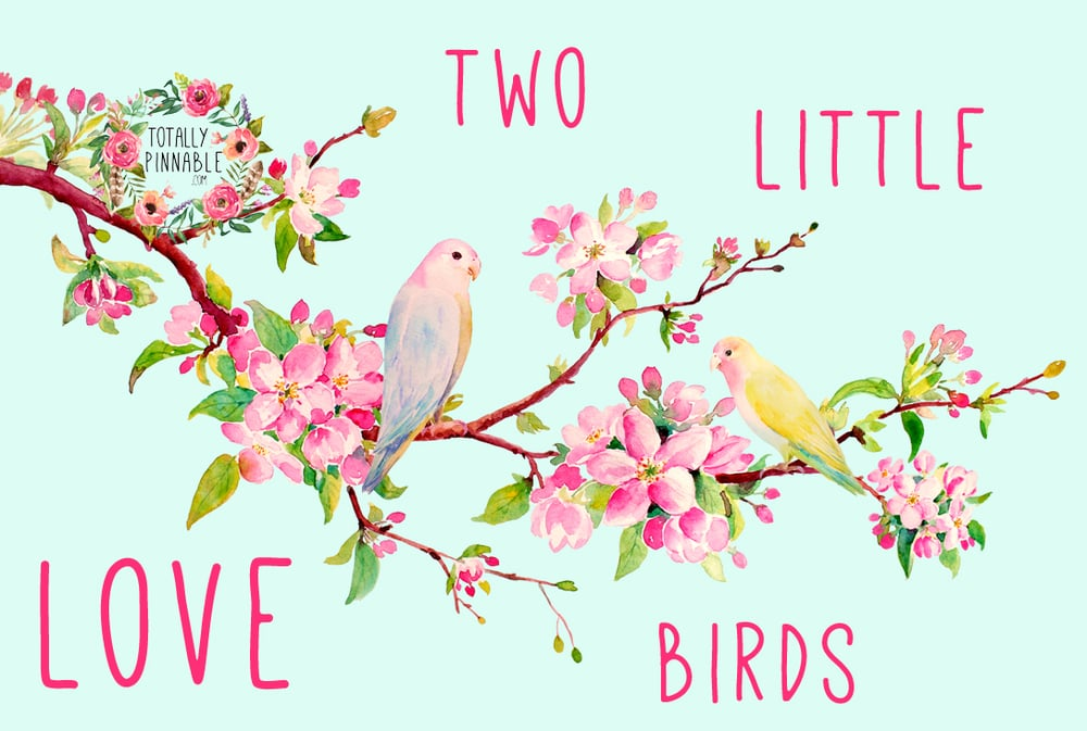 www.totallypinnable.com two little love birds valentines confetti and real petals glassine envelope