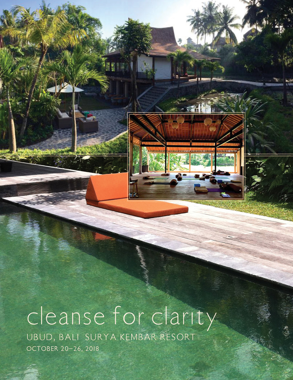 brochure_cleanse_for_clarity_v5.jpg