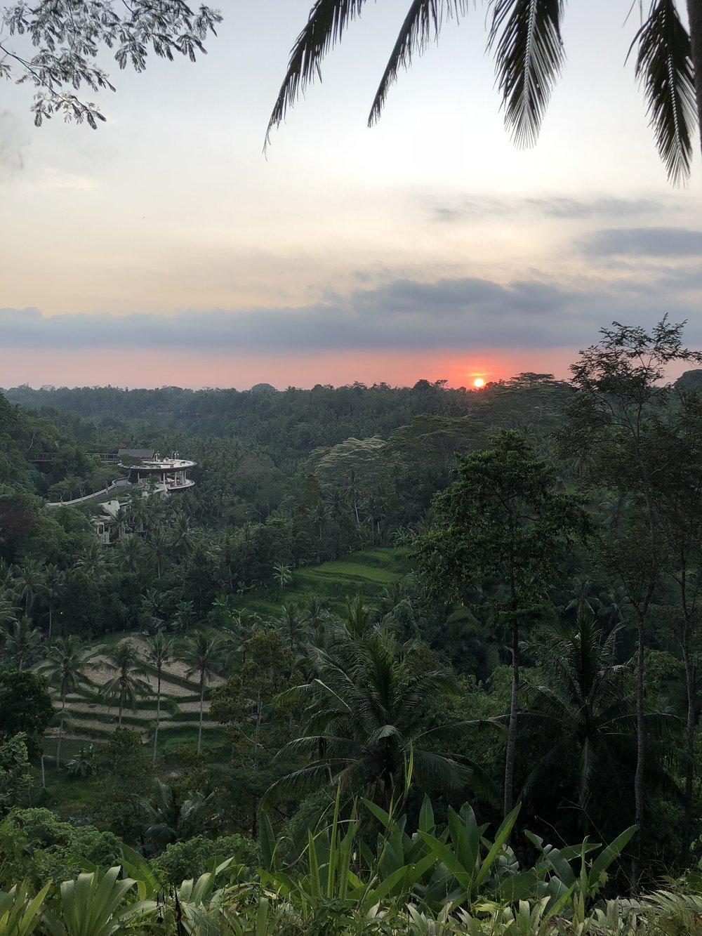 View from Sayan House, Ubud, Bali