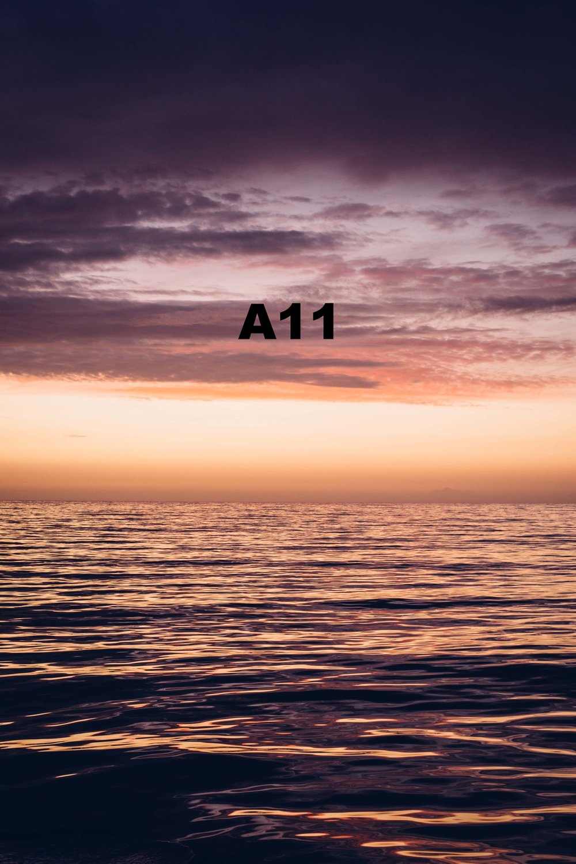 0F8A4629 copy.jpg