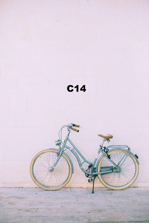 0F8A6829 copy copy.jpg