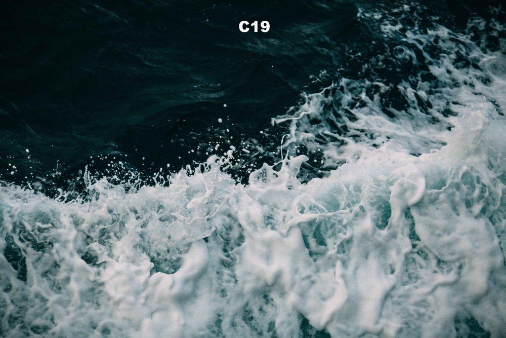 0F8A1266 copy.jpg