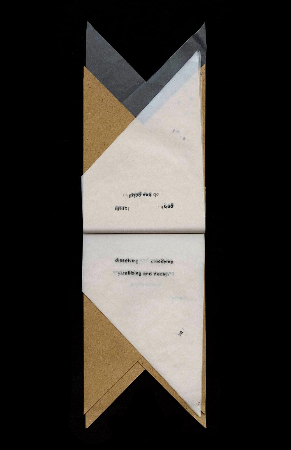 fallmid_0011_Levels 1 copy 7.jpg