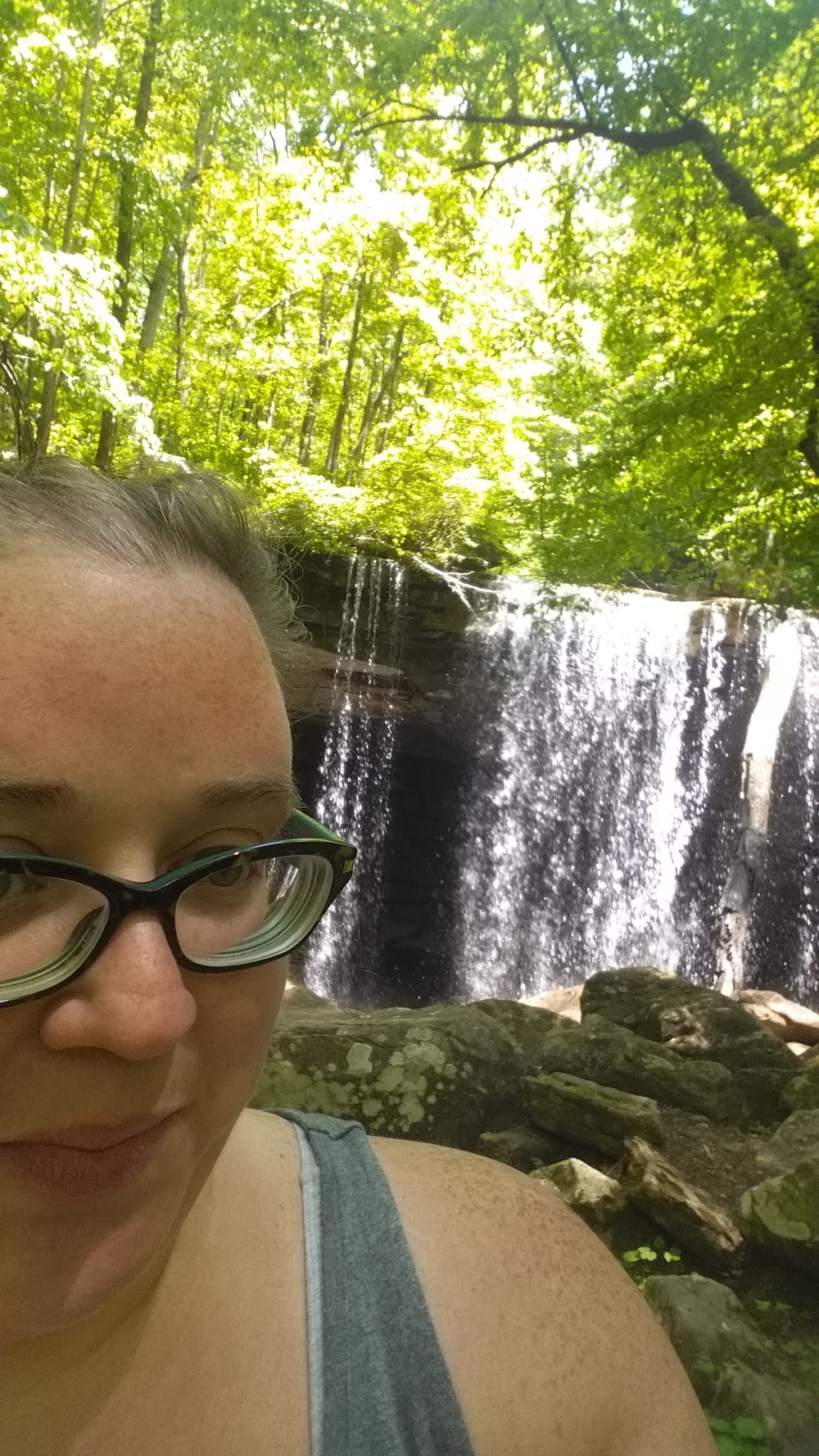 We lunched at Big Laurel Falls. It's about 2.5 - 3 miles in.