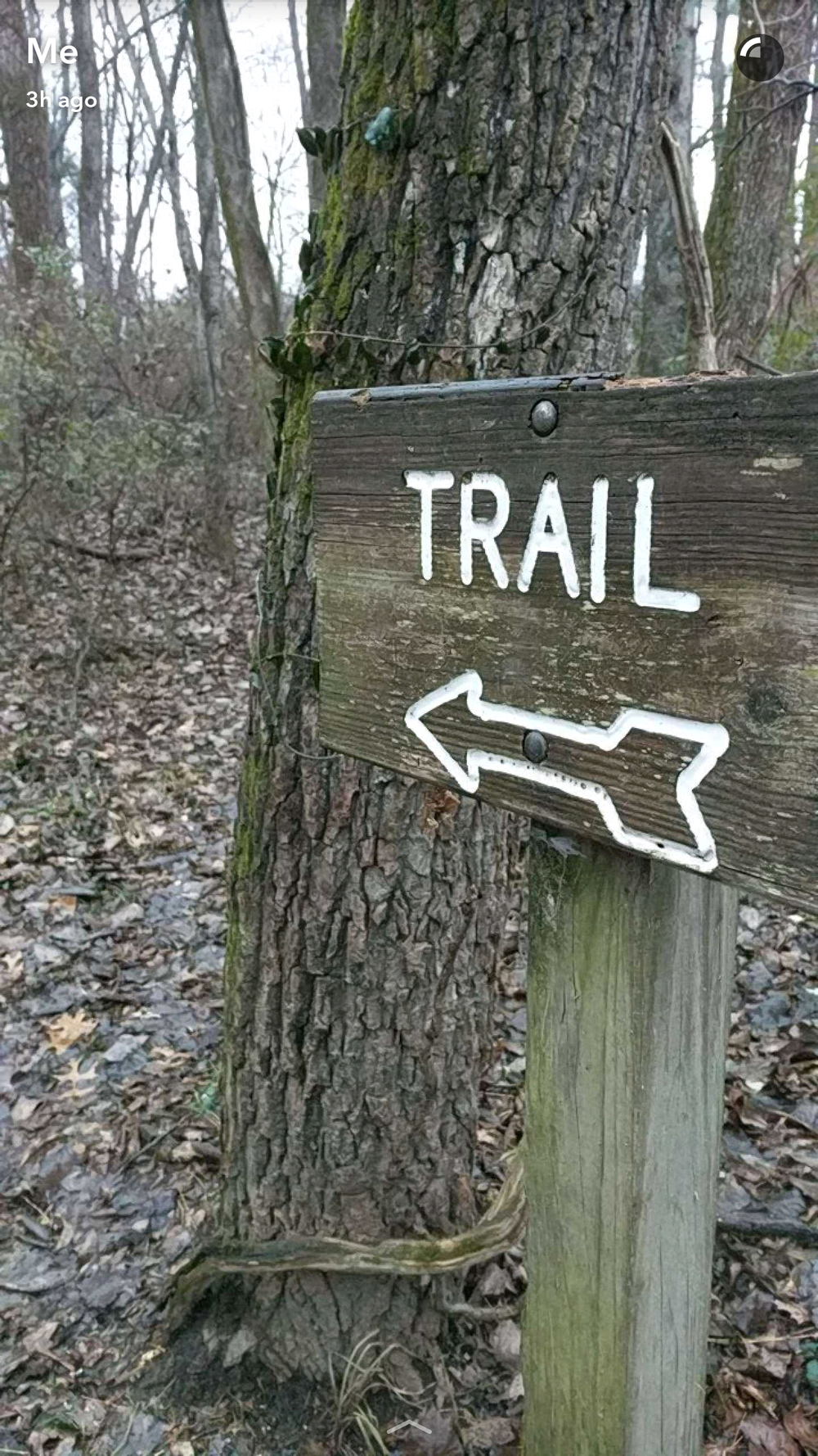 I love a good trail sign.