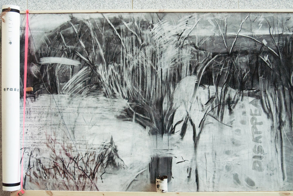 Overworked Landscape, detail after erasure (3 day duration)