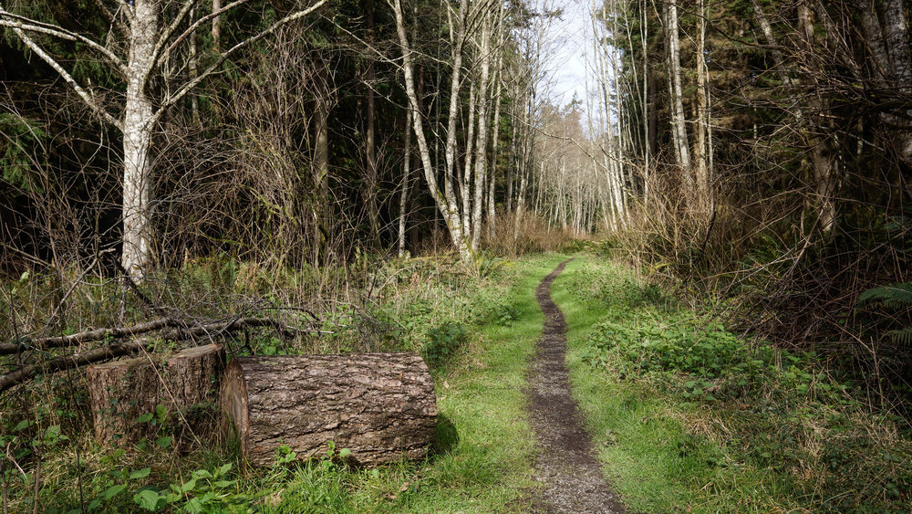 South Whidbey State Park