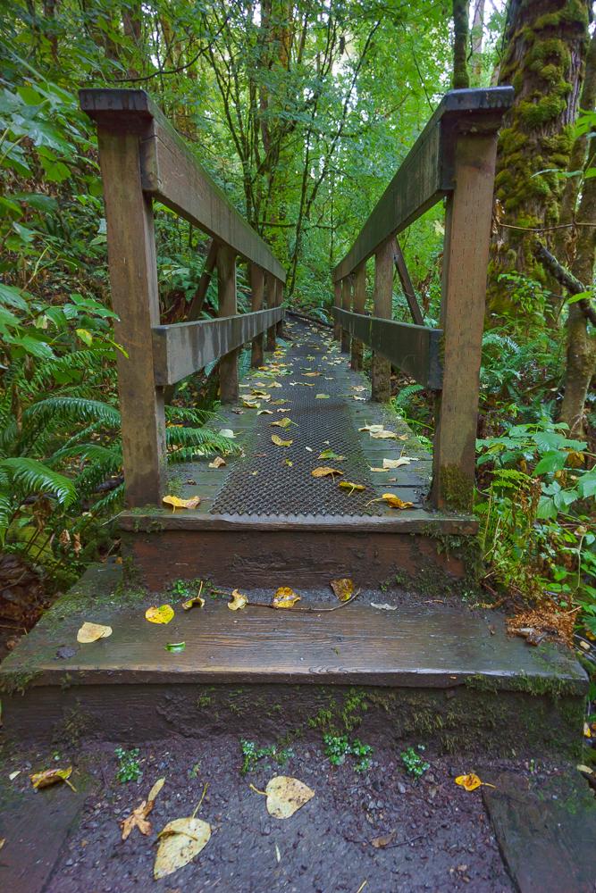 Bridge over Coal Creek