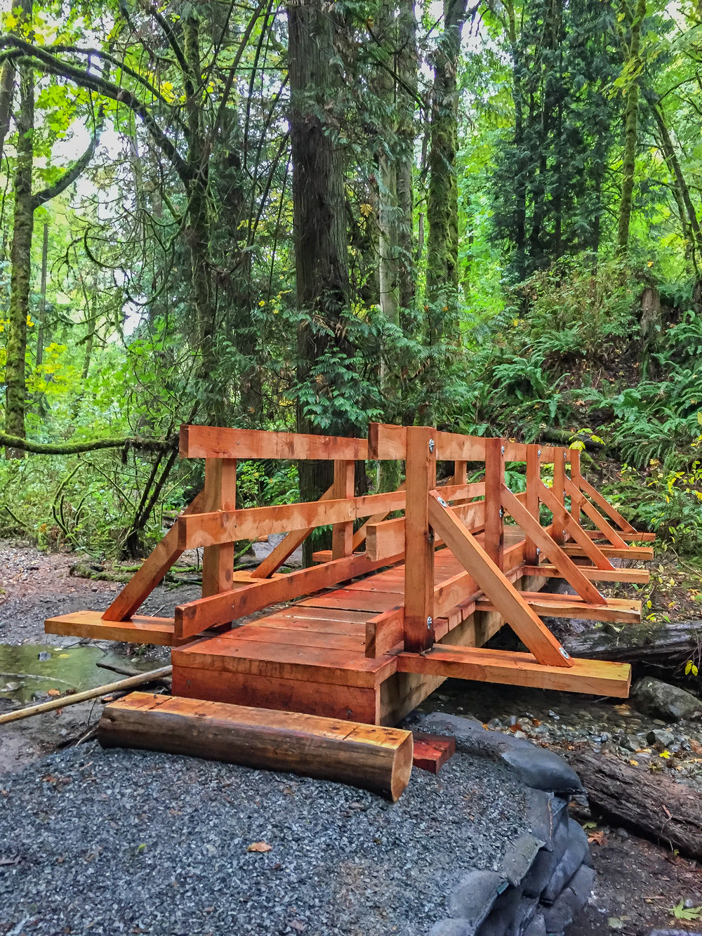 A new bridge installed on the Creekside Trail