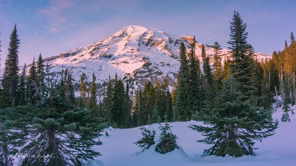 Sunset on Mount Rainier from the Nisqually Vista Trail