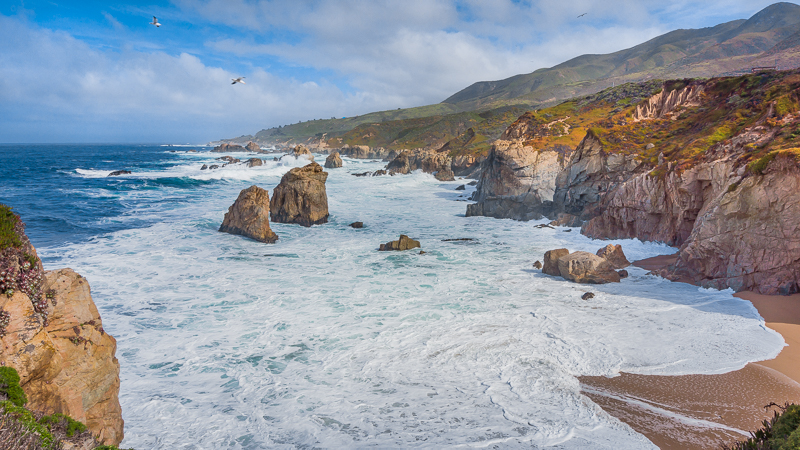 Ocean views and seagulls at Garrapata State Park