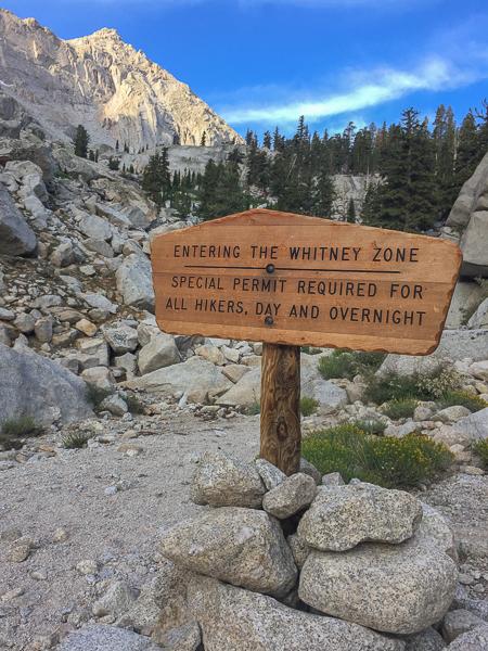whitney zone 1
